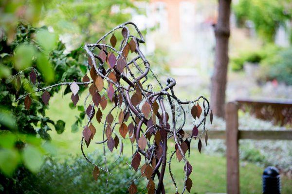 phyllis-tuckwell-memory-tree