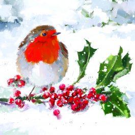 red-robin-Christmas-card